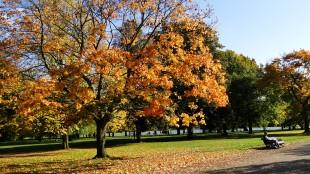 Kensington Gardens - London