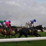 Pferderennen in Fakenham - Norfolk