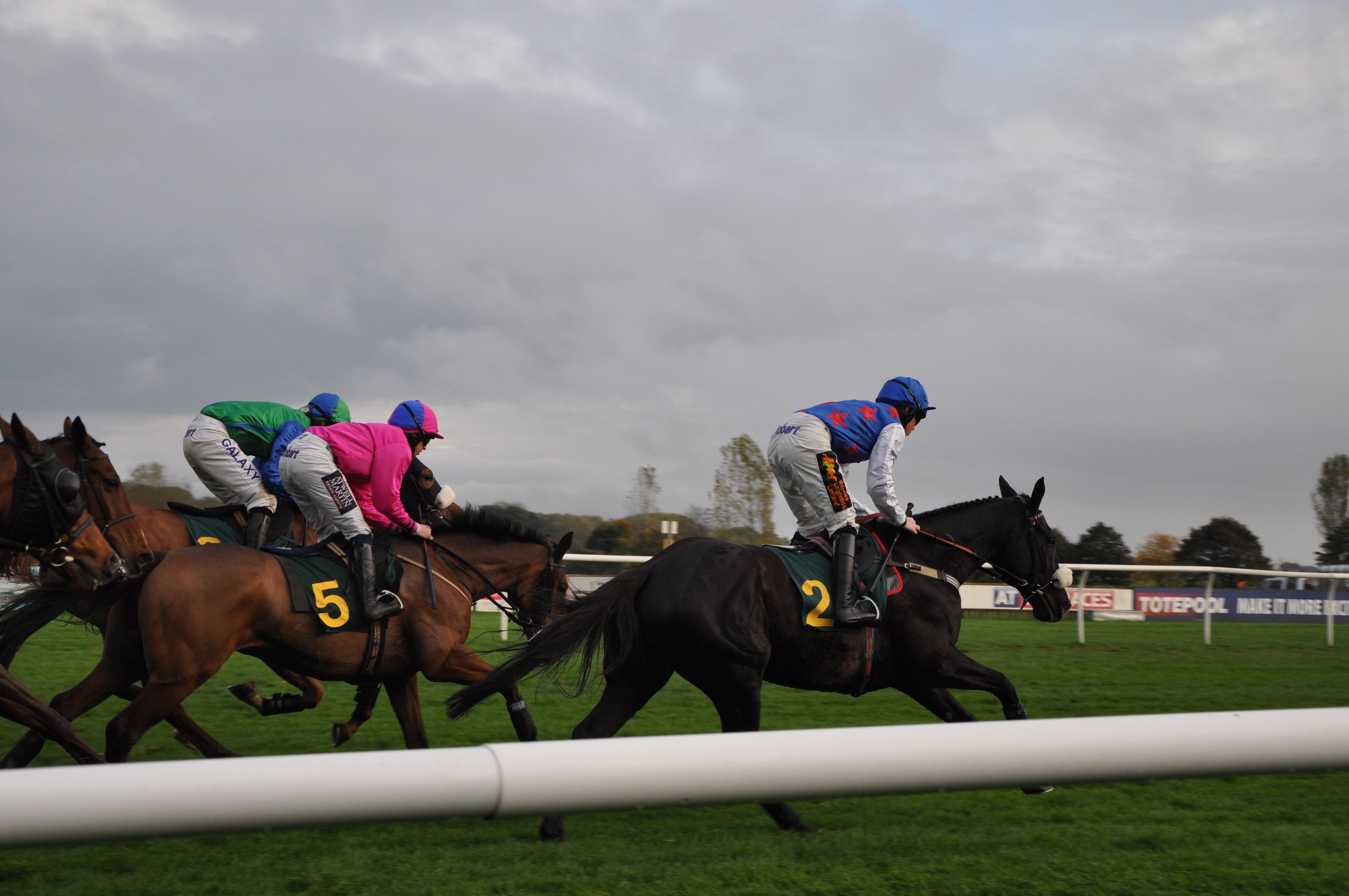 Pferderennen in Fakenham – Norfolk